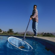 Basic Swimming Pool Maintenance